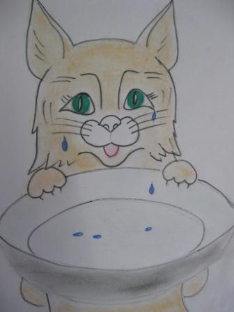 Фразеологизм с котом наплакал