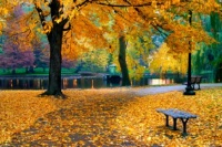 Boston-park-in-fall.jpg